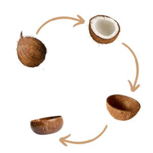 Bowls de coco - Proceso Vientam_Kokonat Bowls